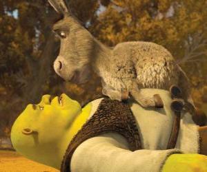 Shrek und Esel, starrte puzzle