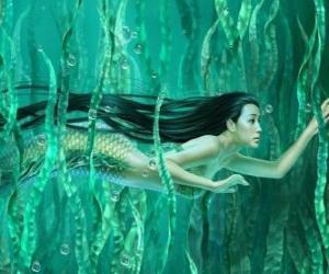 Sirene Schwimmen unter den Algen puzzle