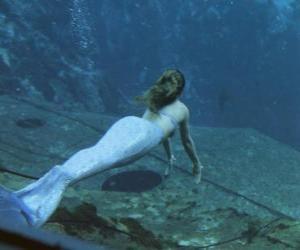 Sirene schwimmen puzzle