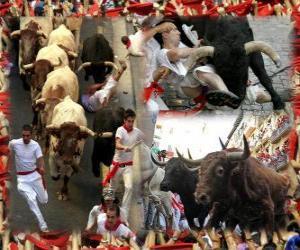 Stierlaufen oder encierro, Sanfermines. Pamplona, Navarra, Spanien. San Fermin Feest vom 6. bis 14. Juli puzzle