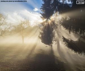 Strahlen der Sonne puzzle