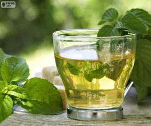 Tasse grüner Tee puzzle