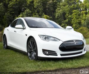 Tesla Model S puzzle
