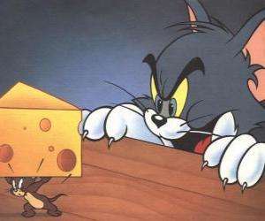 Tom die Katze überrascht Jerry die Maus, um unter einem Stück Käse puzzle