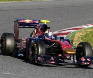 Toro Rosso STR6 - 2011 - puzzle