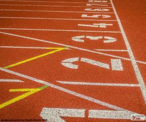 Track Leichtathletik 100 m puzzle