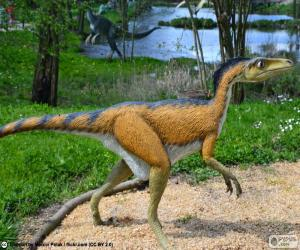 Troodon puzzle