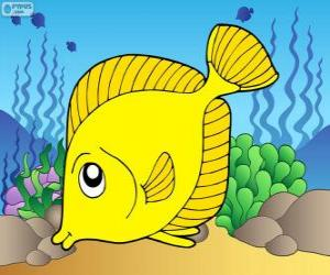 Tropische Fische puzzle