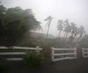 Tropischer Sturm puzzle