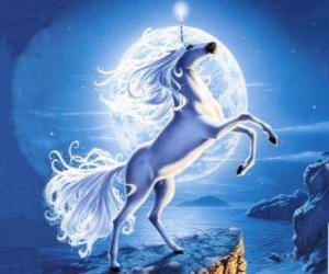 Unicorn - Junge pferde mit einem horn spirale puzzle