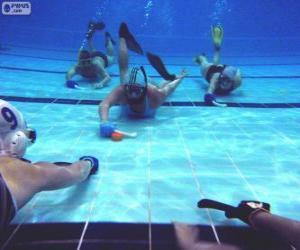 Unterwasserhockey puzzle