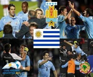 URU finalist, Copa America 2011 puzzle