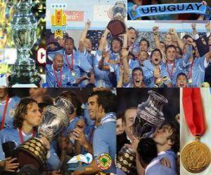 Uruguay Weltmeister Copa America 2011 puzzle