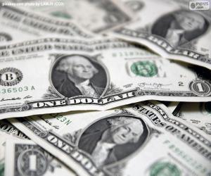 US-dollar puzzle