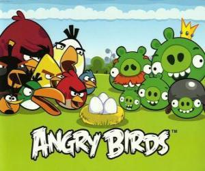 Vögel, Eier und grüne Schweine in Angry Birds puzzle