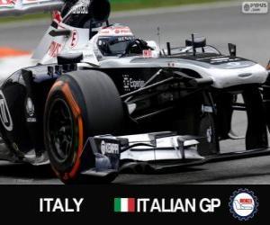 Valtteri Bottas - Williams - Monza, 2013 puzzle