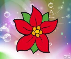 Weihnachten Blume puzzle