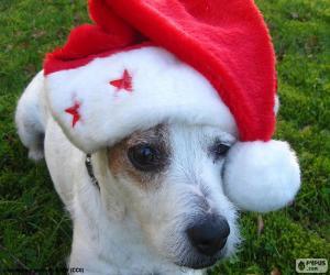 Weihnachten Hund puzzle