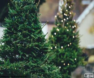 Weihnachtsbäume mit Beleuchtung puzzle