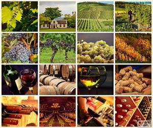 Wein-collage puzzle