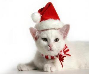 weiße Katze mit dem Weihnachtsmann Hüte puzzle