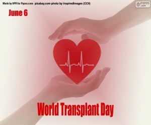 Welttag der Transplantation puzzle