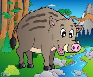 Wildschwein puzzle