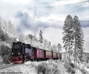 Winter-Zug puzzle