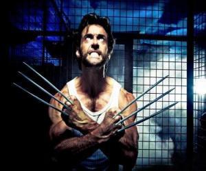 Wolverine ist ein Mutant Superhelden und eines der X-Men ant den New Avengers puzzle
