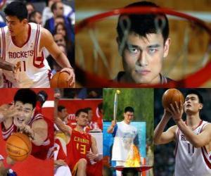 Yao Ming zieht sich aus Profi-Basketball (2011) puzzle