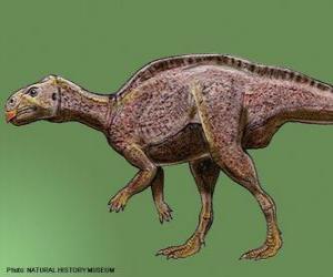 Zalmoxes lebte vor 65 Millionen Jahren puzzle