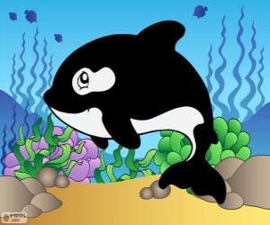 Zeichnung von einem Schwertwal puzzle