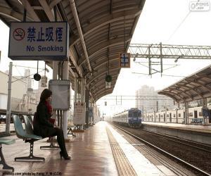 Zug verlässt den Bahnhof puzzle