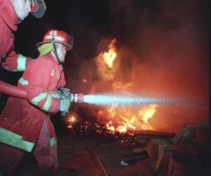 Zwei Feuerwehrmänner in Aktion puzzle