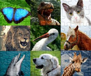 Tiere puzzles