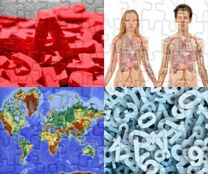 Bildung puzzles