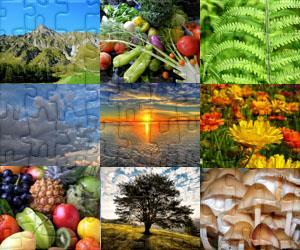 Natur puzzles