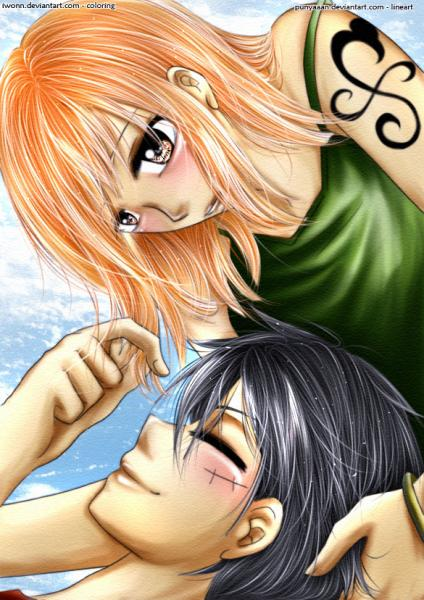 one piece nami x ruffy puzzle